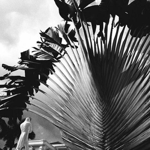 08_PALMSingapour